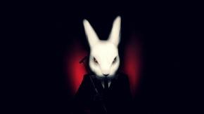 rabbitsssss